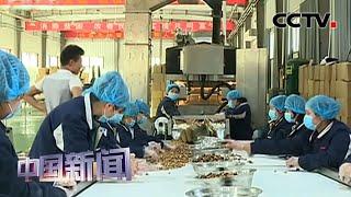 [中国新闻] 坚持人民至上 确保如期高质量打赢脱贫攻坚战 | CCTV中文国际