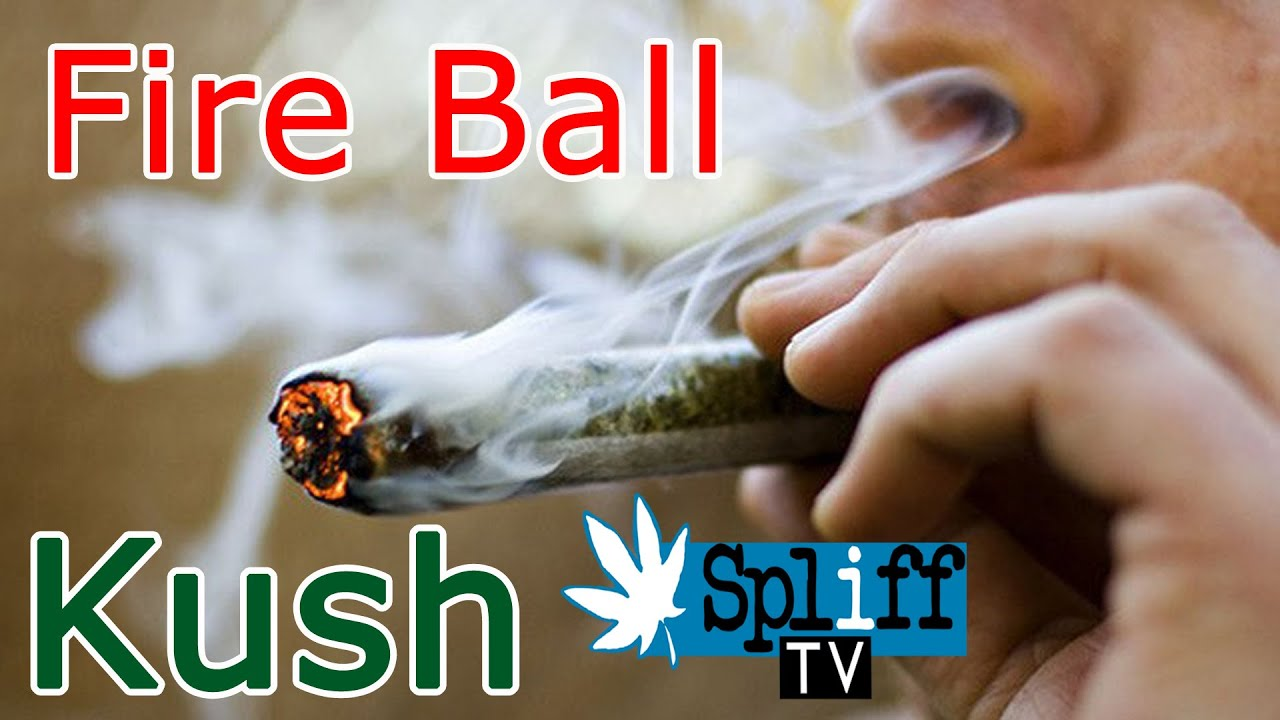 Fire Ball Kush, Tak to jest to co, lubię!  - SPLIFF TV