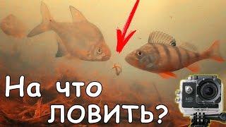 РЫБАЛКА под ВОДОЙ | НА ЧТО МНЕ ЛОВИТЬ?(Снимал для вас видеоловлю на червя в дождливые дни и в сильный ветер. Рыбы было много: окунь, густера, плотва...., 2016-09-27T11:00:02.000Z)