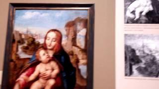 Выставка Эрмитажа «Школа  Леонардо да Винчи» - открытие(4)