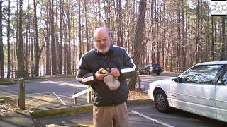 Uncle Steve Hikes Sycamore Trail Redux