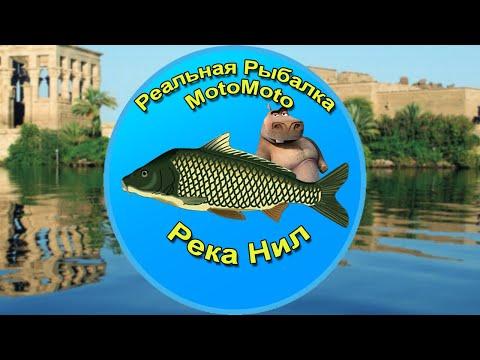 Река Нил | Реальная Рыбалка