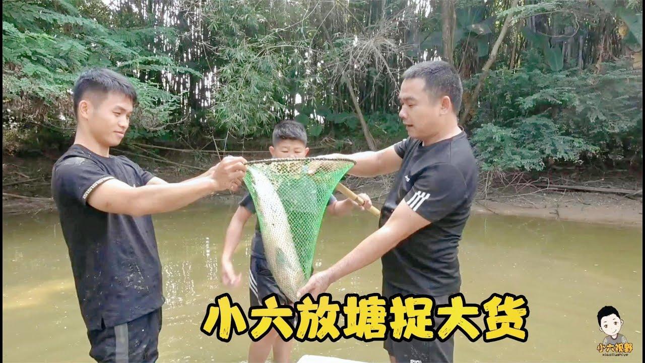 農村5年的老魚塘乾塘了,大貨多得捉不完,一條條比小六的腿還大