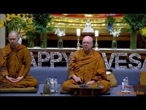 buddhism cats ajahn |eng