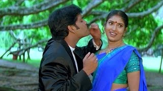 seetaramaraju-movie-srivaru-doragaru---song-nagarjunasanghavi
