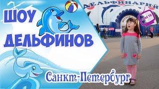 Шоу дельфинов. Санкт-Петербург.