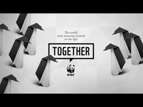 WWF Together - Penguins