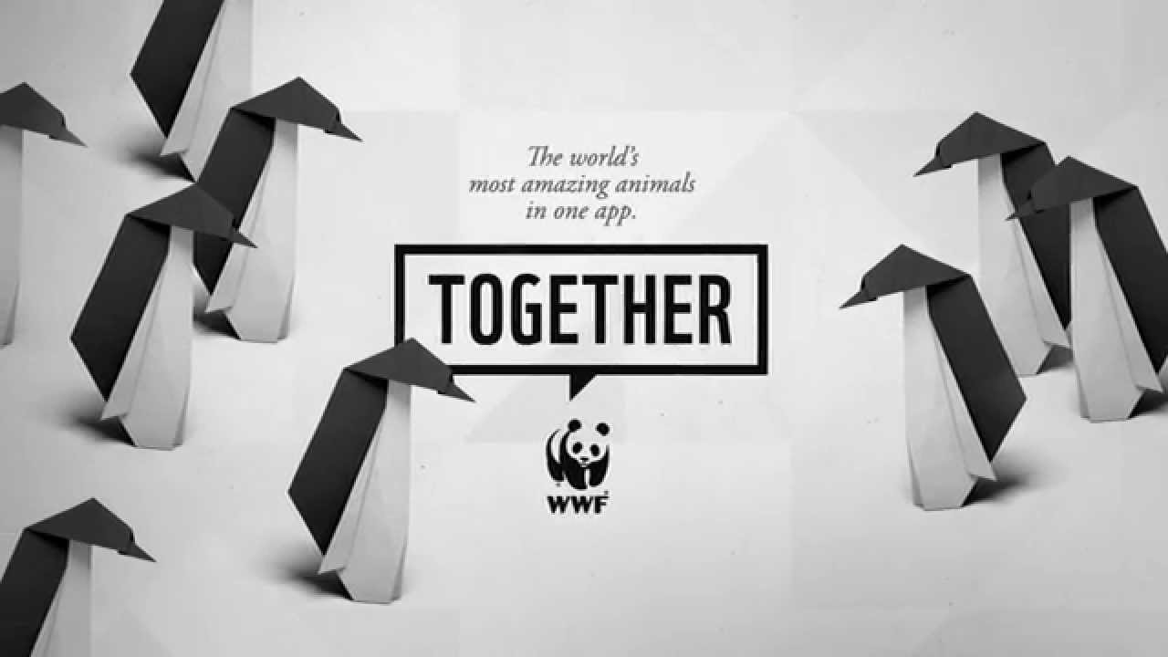 WWF Together - Penguins - YouTube