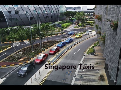 Different Singapore taxis at Jewel Changi Airport