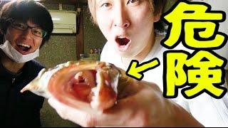 時価10000円の肉食魚を達人が捌く!【きまぐれクック × 渥美拓馬】深夜のコラボ thumbnail