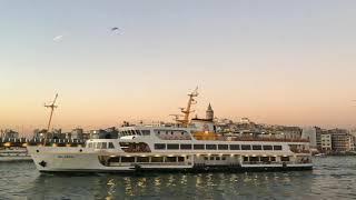 Безопасность туристов в Турции в 2020 Сдавать ли путевку