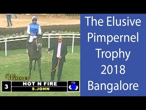 Hot N Fire with S John up wins The Elusive Pimpernel Trophy 2018