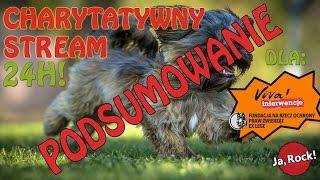Podsumowanie streamu charytatywnego dla zwierzaków!