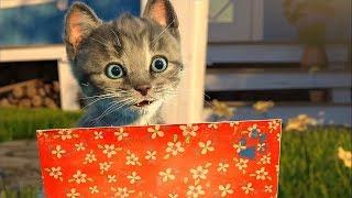 Мой Котик и его забавные приключения - Интерактивный развивающий мультик для детей про Котёнка