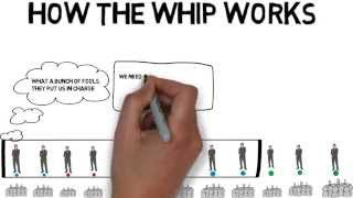 Whip party politics into shape