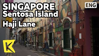 【K】Singapore Travel-Singapore[싱가포르 여행-싱가포르]쇼핑 골목, 하지레인/Haji Lane/Hindu Temple/China Town