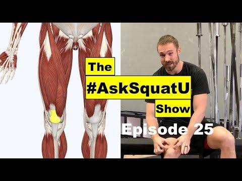 How to Fix Quad & Patellar Tendon Pain |#AskSquatU Show Ep. 25|