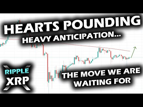 CLARITY IS COMING On The Ripple XRP Price Chart And Bitcoin