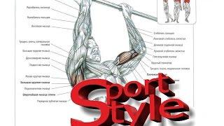 Упражнения на турнике, перекладине, шведской стенке(http://sportstenki.com - РФ http://sport-style.com.ua - УКРАИНА В нашем новом видео мы представляем короткий видеоролик для начина..., 2015-08-12T11:02:34.000Z)
