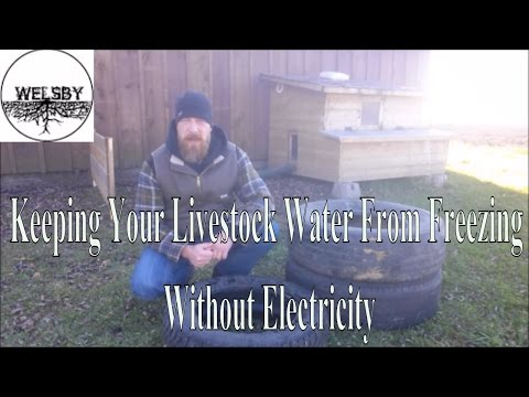 Keeping Your Livestock Water From Freezing Without Electricity 2 0