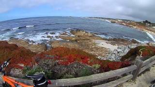 Cycling in Monterey - 17 Miles Drive - Pebble Beach, CA 10202012