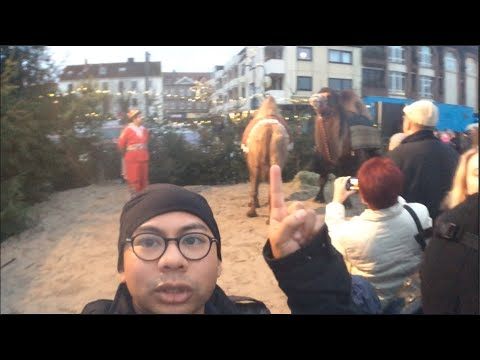 Travel VLOG: They come with camels