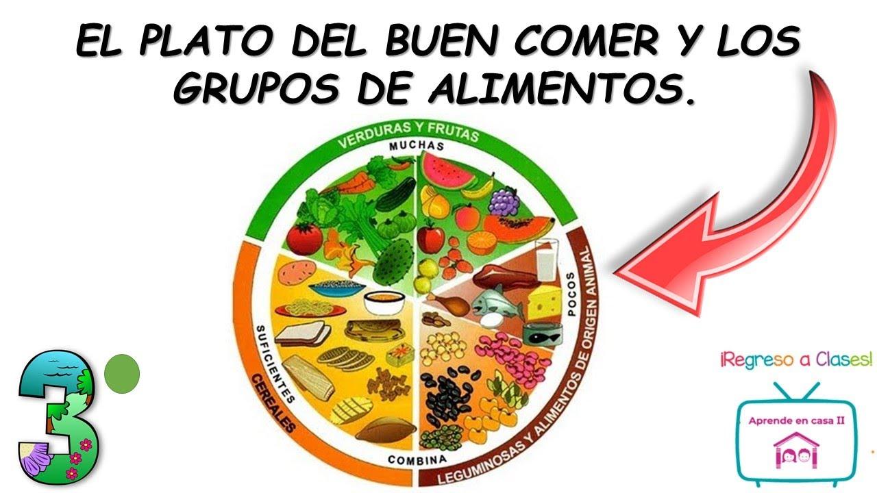El Plato Del Buen Comer Y Los Grupos De Alimentos Youtube