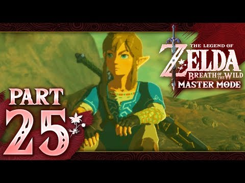 The Legend of Zelda: Breath of the Wild (Master Mode) - Part 25 - Lost