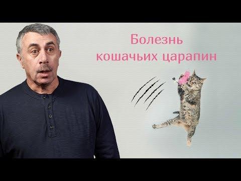 Болезнь кошачьих царапин - Доктор Комаровский