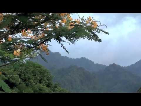 Why we love Yurumein - St. Vincent