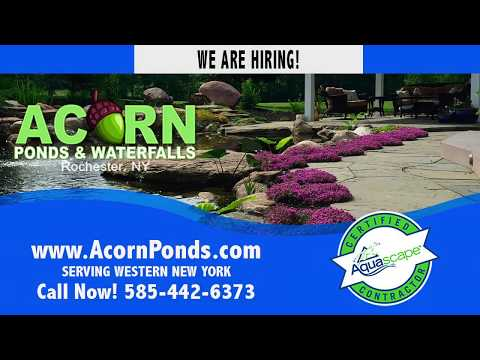 WE ARE HIRING! Rochester New York (NY) Job Opportunity