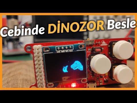 Engineer's Pet Dinosaur