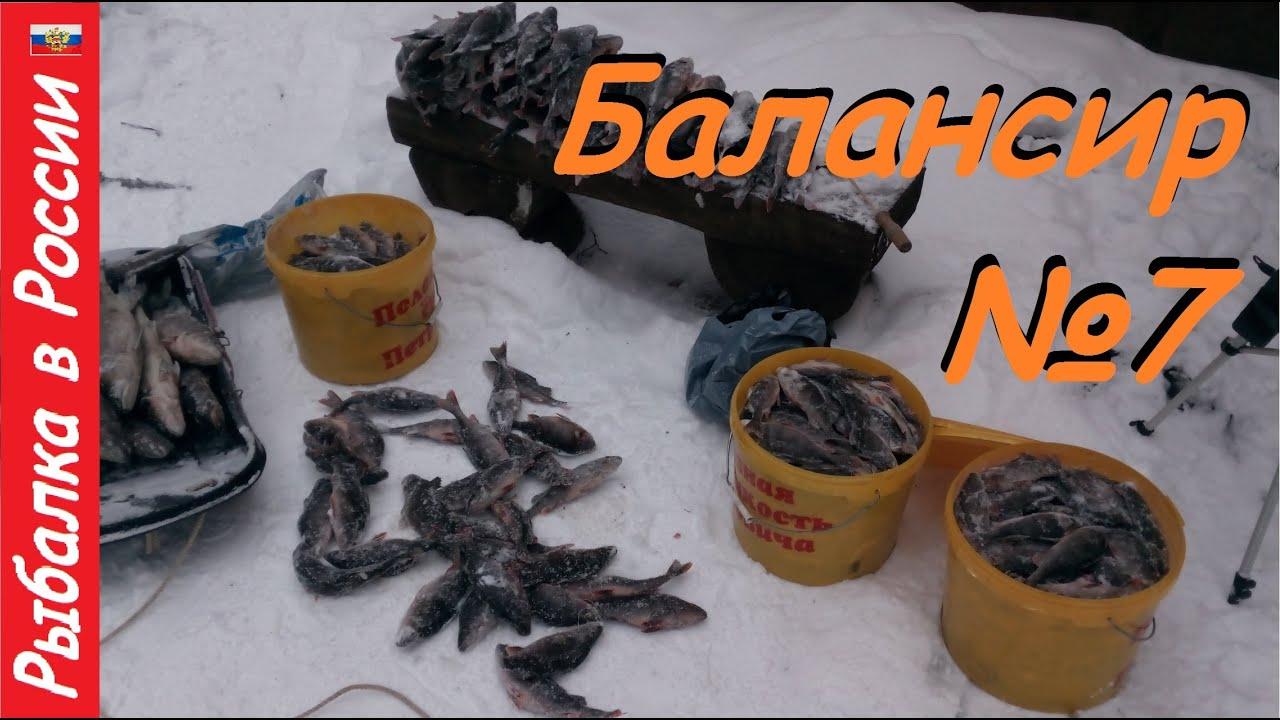 Много окуня зимой не бывает ! Ловля хорошего окуня на балансир Rapala - жаба
