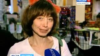 Выставка-продажа кошек в Красноярске
