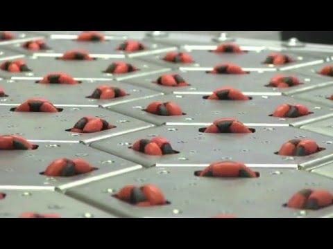Celluveyor - Omnidirectional Cellular Conveyor