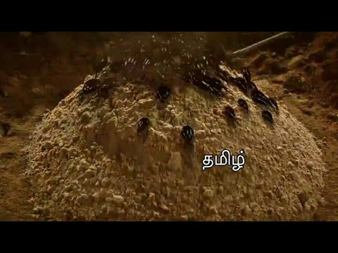 Download The Mummy Returns Tamil