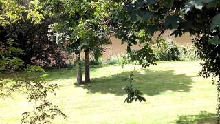Aire Naturelle de Camping de Parcé sur Sarthe