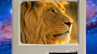 Lifehacker - Mac OS X Lion SECRETS, Hackintosh Upgrades, and FreeNAS Blowout! - Lifehacker