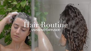 My Frizz-Free Natural Wavy/Curly Hair Routine: No Diffuser screenshot 4