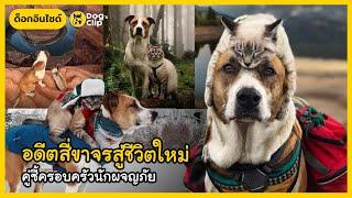 อดีตสี่ขาจรสู่ชีวิตใหม่ คู่ซี้ครอบครัวนักผจญภัย | Dog's Clip