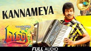 Kannameya Vittiya | Full Audio | Eli | Vadivelu | Sada | Vidyasagar | Viveka | Yuvaraj Dhayalan
