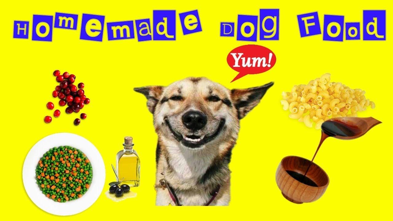 Homemade dog food yummy pasta and veggie recipe youtube homemade dog food yummy pasta and veggie recipe forumfinder Gallery