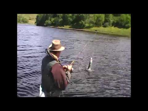 Loch Awe Pike Fishing.