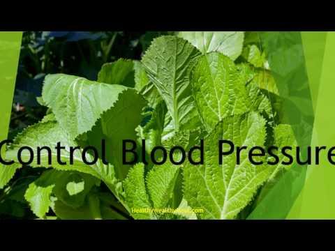 Top 10 Health Benefits of Mustard Greens | healthy Wealthy Tips