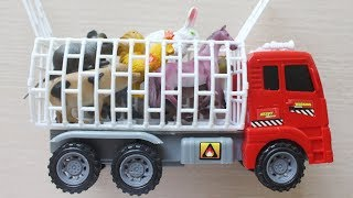 Learn Farm Animal Transporter for Kids - Learn Name Animals and Real Life