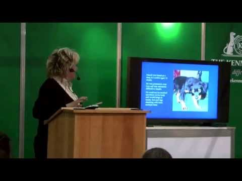 Tellington TTouch - Sarah Fisher - Discover Dogs