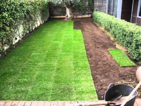 ≫ Cómo plantar tepes en nuestro jardín | Como-plantar.org