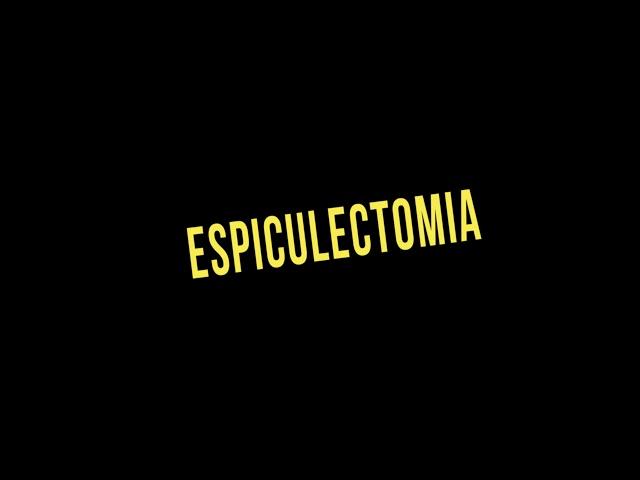 ESPICULECTOMIA