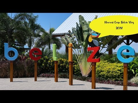 Harvest Caye, Belize Vlog 2018! (Port tour, Mangrove Estuary Excursion)