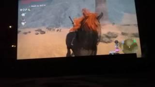Gannon's horse.